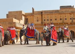 Elephants at the entrance of Amer Fort